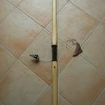 archi-giunco-DS2222